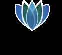 Dizlin Logotyp