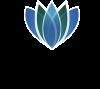 Dizlin Logo